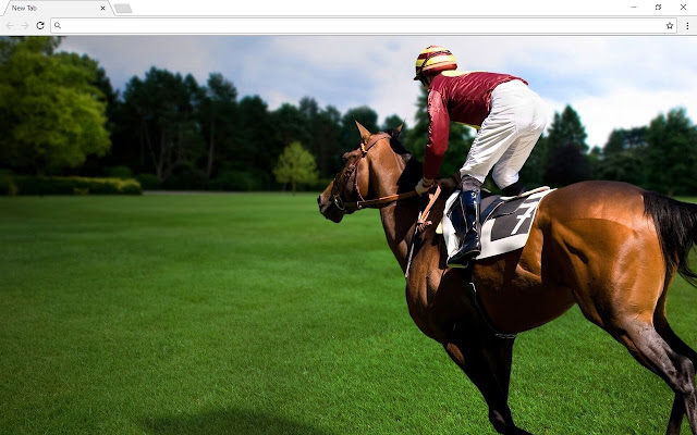 Horse and Horses Backgrounds & Themes