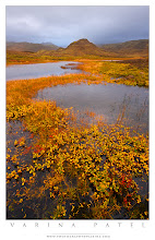 Photo: Autumn in Iceland  This is the last shot I took with my10-22mm lens in Iceland. Moments later, it bit the dust. Literally. You can read all about it on our blog...  http://www.photographybyvarina.com/photography/blog/iceland-day-2-2