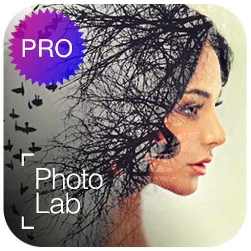 Photo Lab PRO Picture Editor: effects, blur & art 3.7.6