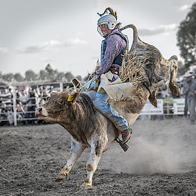 Hang In There 2 by Paul Milliken - Sports & Fitness Rodeo/Bull Riding ( bucking bull, bullriding, rodeo )