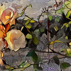 Roses abstract 2 by Cassy 67 - Digital Art Things