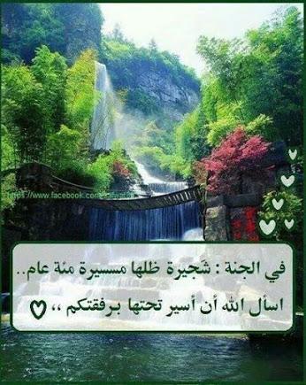 صباح الأمنيات الجميل PeLtogsOND55Hl_JLkj5