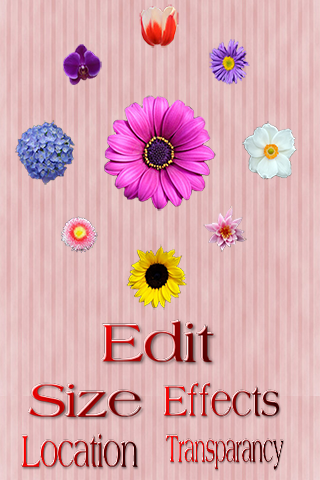 Flowers Photo Frames Editor