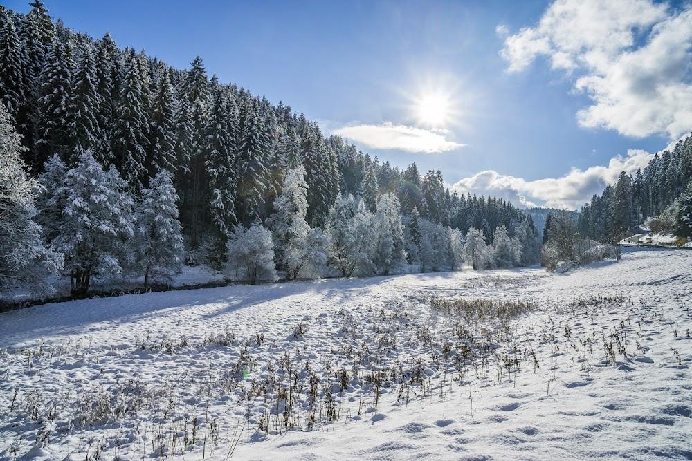 Eine winterliche Schneelandschaft bei Sonnenschein