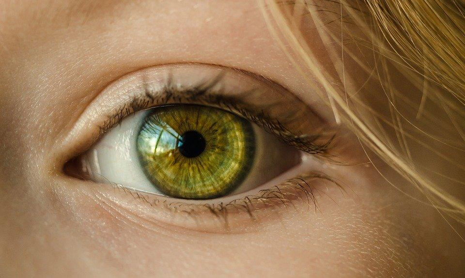 Eye, Iris, Look, Focus, Green, Close Up, Macro, Girl