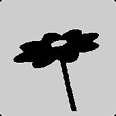Minima02: Pollination