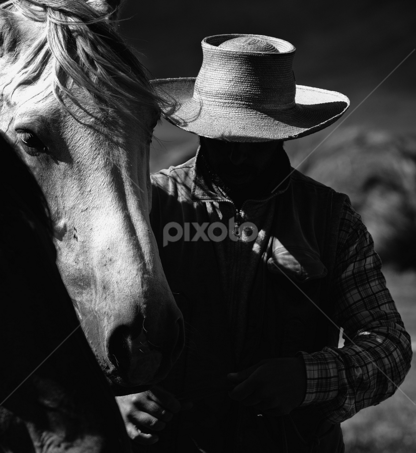 A guy and his horse by Bruno Brunetti - Black & White Animals ( black and white, horse, italy, castelluccio, animal,  )
