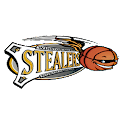 Winston-Salem Stealers icon
