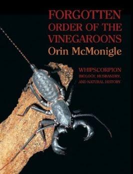 Nya Böcker: Insekter/Ledjur