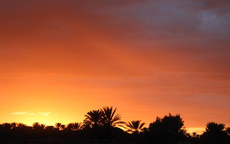 Oasi al tramonto di ViVa