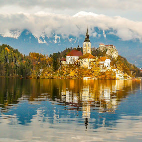 Bled Slovenia by Andrej Kozelj - Landscapes Waterscapes ( water, reflection, nature, church, waterscape, slovenia, churches, lakes, bled, reflections, lake, island )