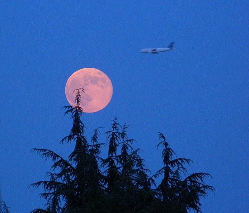 Luna rosa di lucaldera