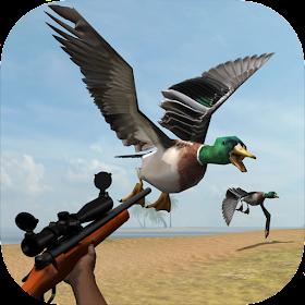 Wild Bird Hunt