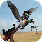 Wild Bird Hunt 1.0 Apk