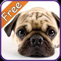 Pug+ Free icon