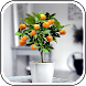 DIY Fruit Trees in Pots Ideas - Androidアプリ