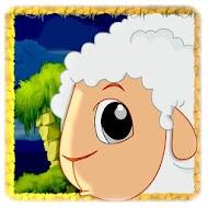 Save counting sheep