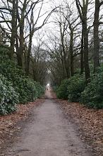 Photo: laan op landgoed de Sprengenberg