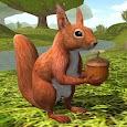 Squirrel Simulator 2 : Online