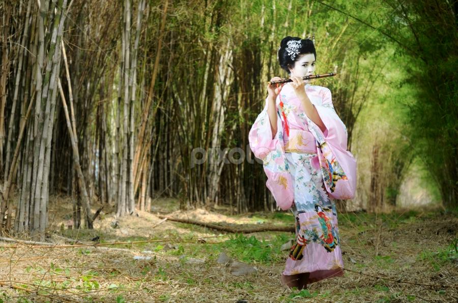 Lady of Geisha by Muhammad Said Harisuddin - People Fashion ( kimono, girl, japan )