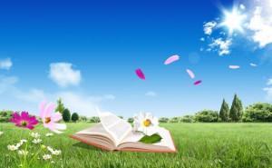 C:\Documents and Settings\Библиотека\Рабочий стол\На сайт Библиотекари\kniga-leto-300x185.jpg