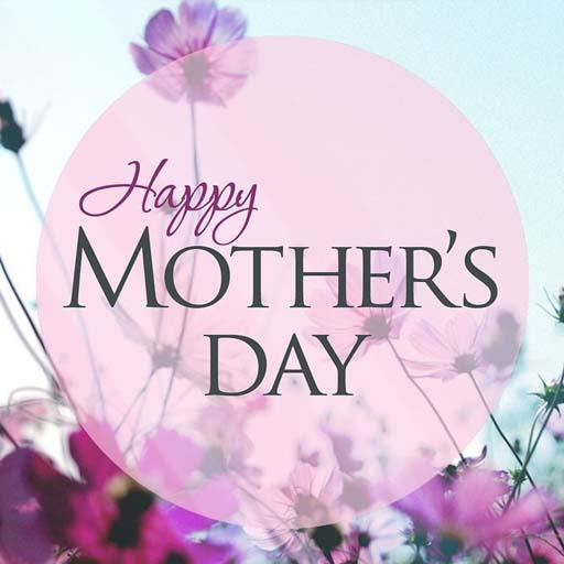 PC u7528 Mother's Day Greeting Cards and Quotes 2