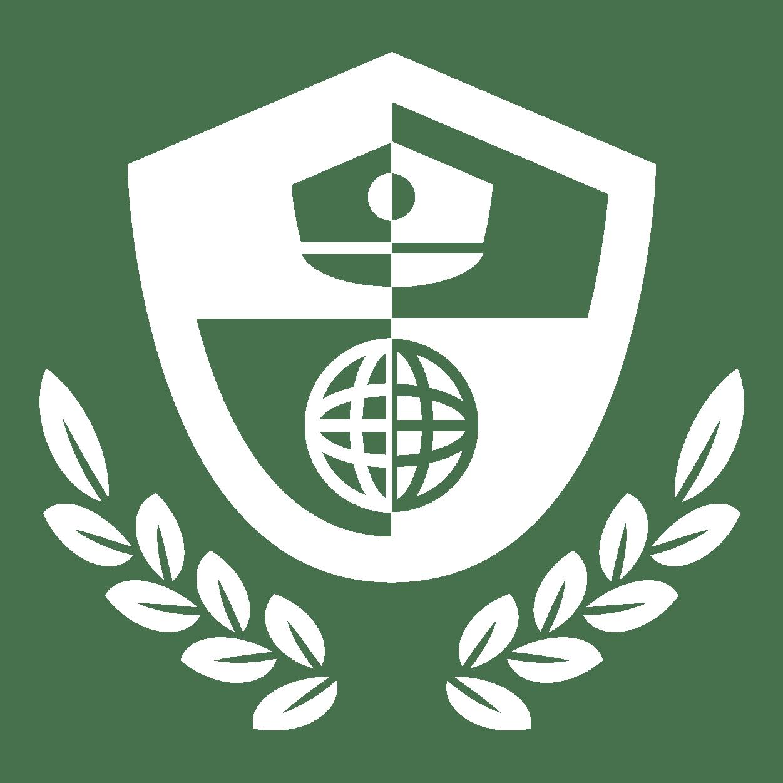 Logo LISA Institute