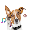 Dog Ringtones n Stunning Dogs Wallpapers icon