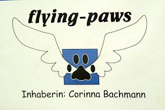 Photo: Dorffest in Bergheim - Vorführungen Hundeschule Flying-Paws