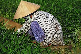 Photo: Woman in garden