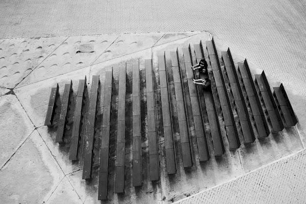 """""""Asocial"""" di Nicola Rossignoli photo2017"""