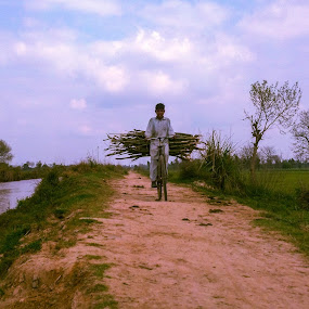 From the forest by Muhammad Gujjar - People Street & Candids ( work, water, cycle, peo, village, woods )