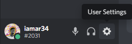 Discord window, click on the User Settings