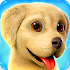 Dog Town: Pet Shop Game, Care & Play with Dog1.3.21