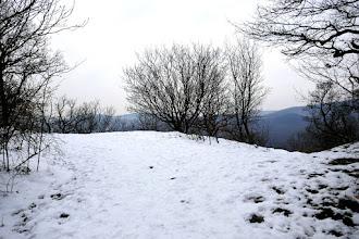 Photo: Balra kilátás a Király-völgy (Staravoda), a Csikóvárak és a Bölcső-hegy felé, jobbra sorompóval lezárt erdei út a S+ jelen át a völgybe.