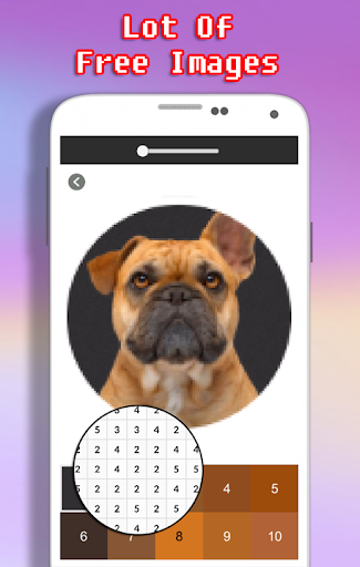 Dog Photography Coloring Book - Color By Number android2mod screenshots 6