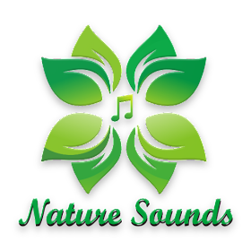 Nature Sounds - Forest Meditation – (Android تطبيقات) — AppAgg