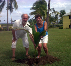 Photo: Congratulations also to Mr. and Mrs. Christopher Birkby from Sheffield, England. The couple celebrated their 35th wedding anniversary and third visit to Nisbet with a palm planting.