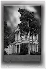 Foto: 2012 11 03 - P 185 A - Baum und Burg