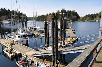 Photo: Government dock in Bamfield