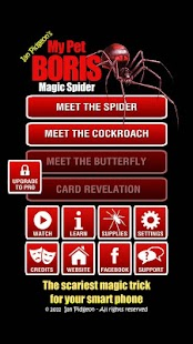 Magic Spider - screenshot thumbnail
