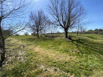 terrain à Serignac (82)