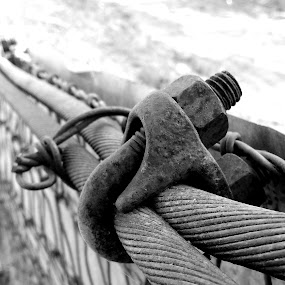 Secure by Tom Carson - Artistic Objects Other Objects ( safe, bolt, b&w, wire, cable, screw, secure, rusty, steel, protect, stark, forgotten, iron, tools, cold, rusted, outdoors, fastener, tight, hard )
