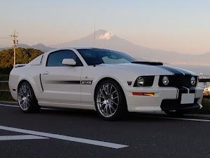 マスタング クーペ  GT Californiaspecialのカスタム事例画像 T さんの2020年11月14日17:46の投稿