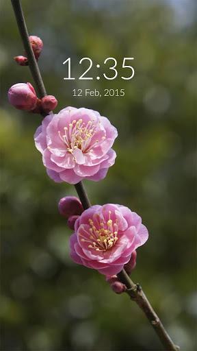Flower Blossom Wall Lock