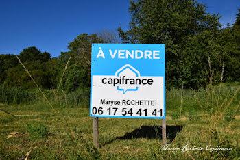 terrain à Angers (49)