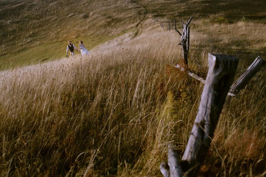 Wedding photographer Igor Shevchenko (Wedlifer). Photo of 25.10.2017