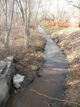 Photo: Is this Town Brook, leading from Quincy Reservoir in Braintree