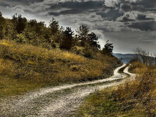 Path di Mirko Macari Fotografia