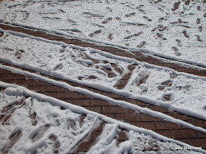"Photo: ""Snow"", Town Center, Celebration, FL"